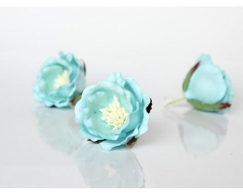 """Полиантовые розы """"Св. бирюзовый"""", 1 шт."""