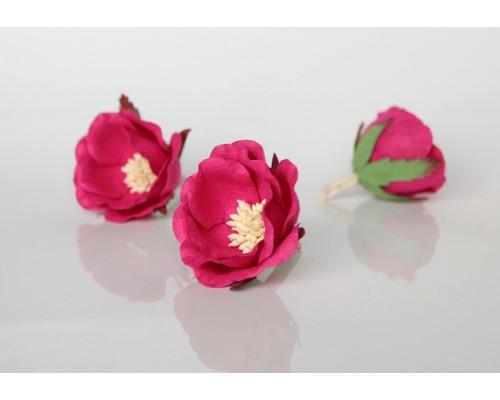 """Полиантовые розы """"Фуксия"""", 1 шт."""