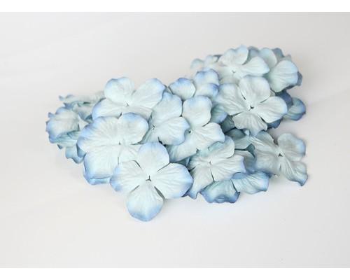 Гортензии голубые 2х-тоновые 5 см, 10 шт