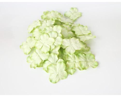 Гортензии св.зеленые 2х-тоновые 5 см 10 шт