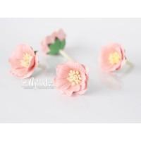 """Цветок Сенполии """"Розово-персиковый светлый"""", 1 шт."""
