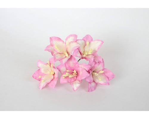 Лилии розовые с белым, 5 шт.
