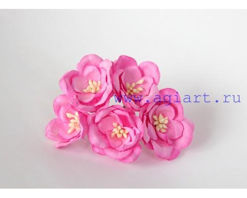 Магнолии розовые яркие, 5 шт.