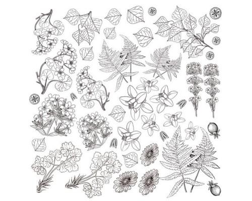 """Лист для для раскрашивания аква чернилами """"Botany summer"""", 30,5x30,5см Фабрика Декору"""