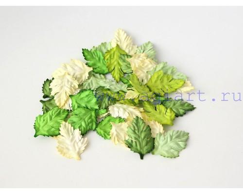Листья шиповника микс зеленые оттенки, 4*2,5 см, 10шт