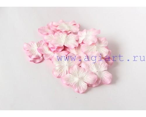 Гортензии светло-розовые с белым 5 см 10 шт