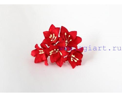 Лилии красные, 5 шт.