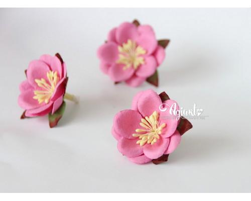 Сакура Розовая средняя, 1 шт.