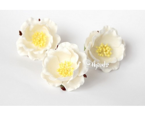 """Полиантовые розы """"Белый"""", 1 шт."""