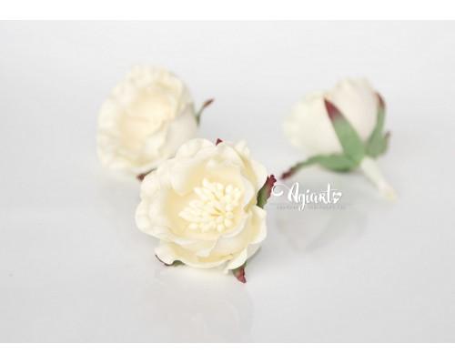 """Полиантовые розы """"Молочный"""", 1 шт."""