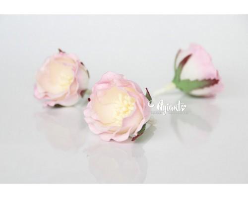 """Полиантовые розы """"Св. розовый + белый"""", 1 шт."""