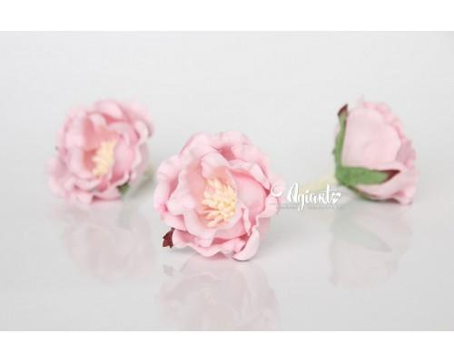 """Полиантовые розы """"Св. розовый"""", 1 шт."""