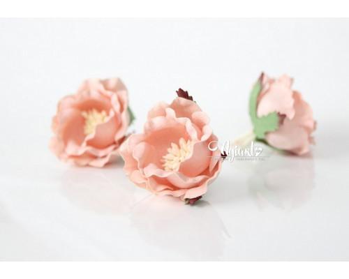 """Полиантовые розы """"Розовоперсиковый светлый"""", 1 шт."""