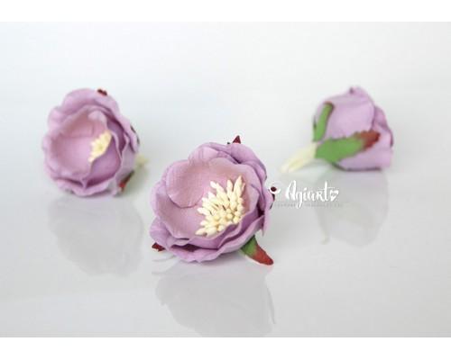 """Полиантовые розы """"Сиреневый"""", 1 шт."""