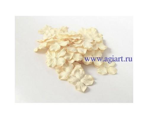 Гортензии Св. желтые 5 см 10 шт