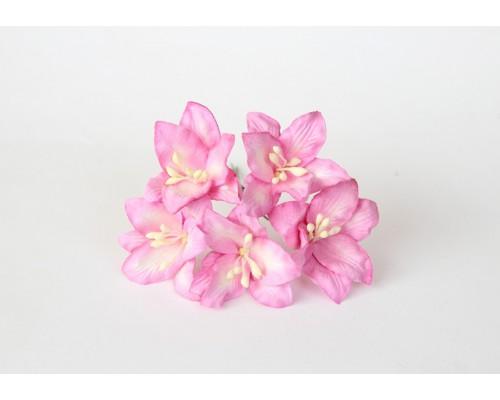 Лилии розовые, 5 шт.