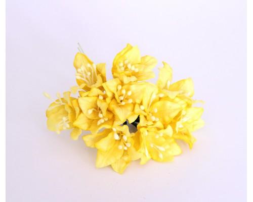 Лилии жёлтые, 5 шт.
