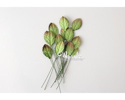 Листья зеленые маленькие,  2,8*1,7 см., 10шт.