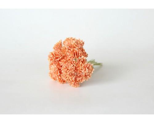 Гипсофилы Оранжевые 10 шт