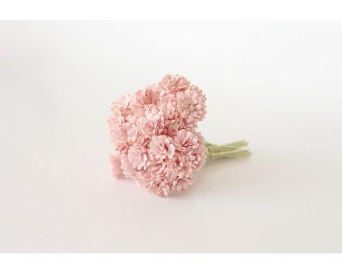 Гипсофилы розово-персиковые 10 шт