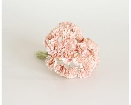 Гипсофилы розово-персиковые светлые 10 шт
