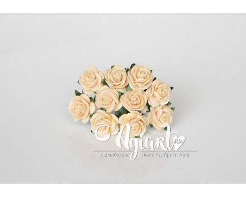 Розы светло-персиковые 1,5 см, 10шт.