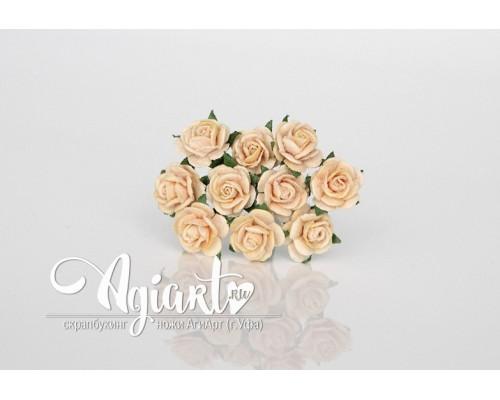 Розы св. персиковые 1 см, 10шт.