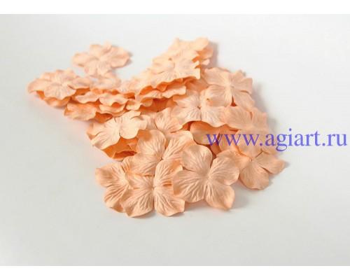 Гортензии персиковые 5 см 10 шт