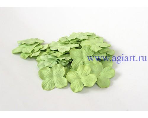 Гортензии св.зеленые 5 см 10 шт