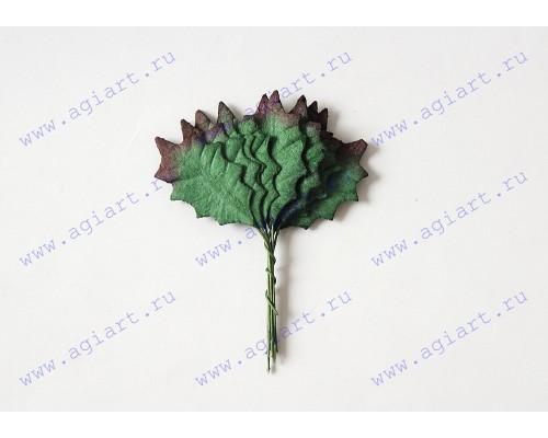 Листья остролиста зеленые,  3*2 см., 10 шт.