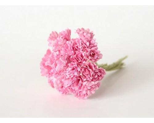 Гипсофилы розовые 10 шт