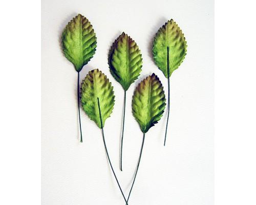 Листья зеленые средние 3*2,5 см, 10шт