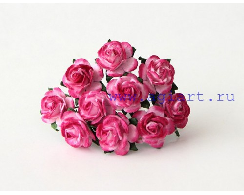 розы Розовый+фуксия 1,5 см, 10 шт.