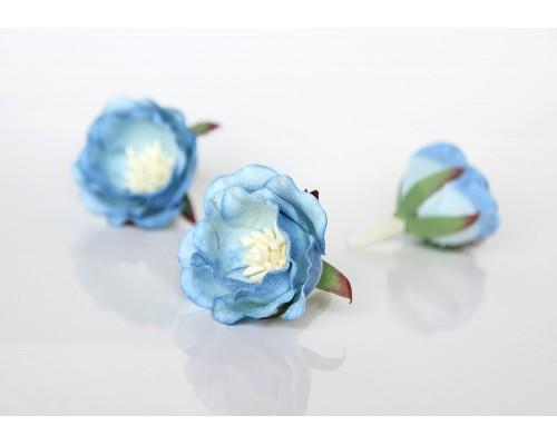 """Полиантовые розы """"Голубые двухтоноыве"""", 1 шт."""