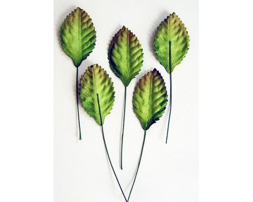 Листья зеленые маленькие со стебельком, 3,5*2 см, 10шт