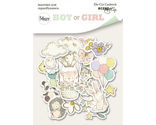 "Высечки бумажные ""Boy or Girl"" 54шт., Scrapmir"
