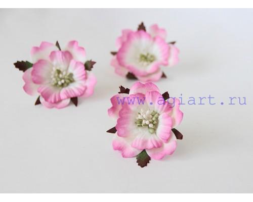 Бумажный Пион, розово-белый 1 шт