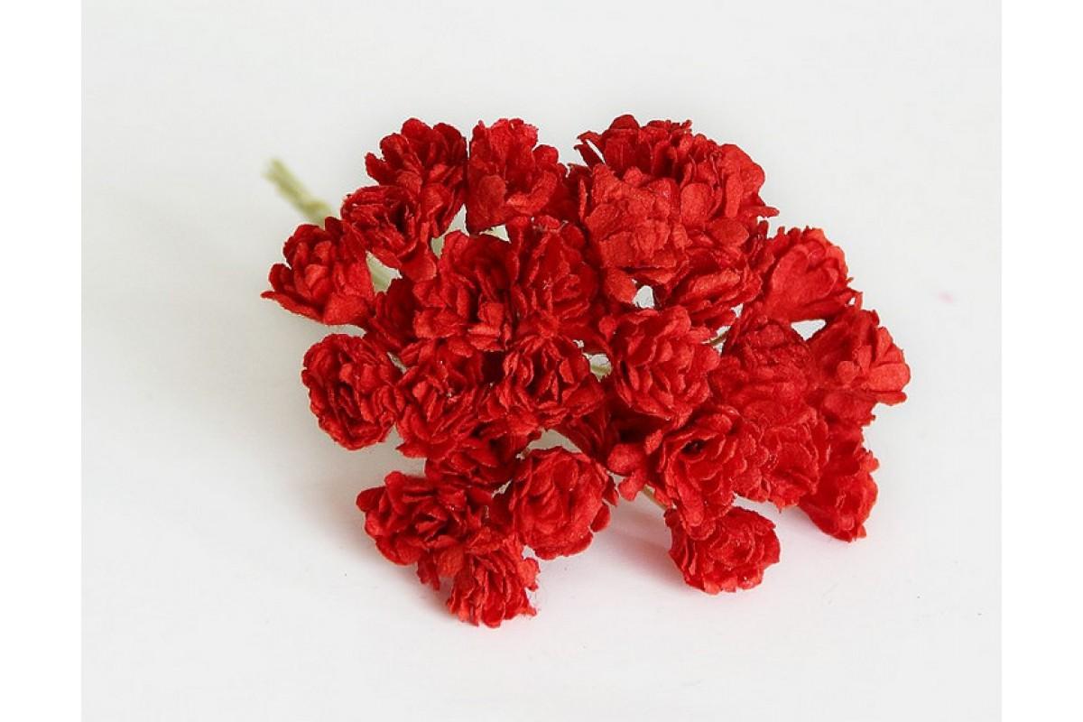 Гипсофилы красные 10 шт