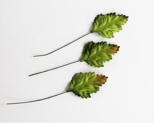 Листья шиповника зеленые, 3,5 см, 10шт