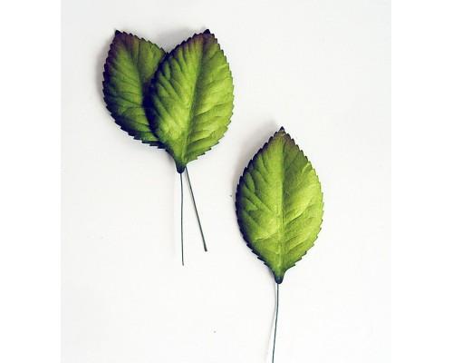 Листья зеленые большие, 6*3,5 см, 10шт