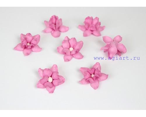 Фиалки розовые, 5 шт